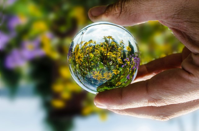 glass-ball-with-flowers - George Hodan photographer