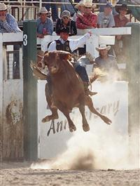 2005 Rodeo - Bull Ride