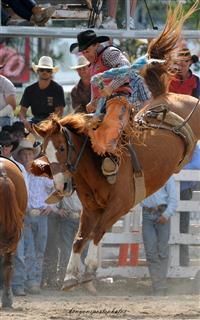 Warwick Rodeo bronc riding